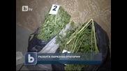 Разбиха нарколаборатория в Момчилград