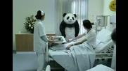 Никога не казвай Не на панда All