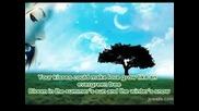 Cliff Richard - Evergreen Tree (lyrics)