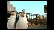 Пингвините от Мадагаскар Сезон 1 Епизод 5 Бг Аудио hq