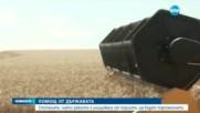 Държавата подпомага стопаните на реколтата, унищожена от пороите