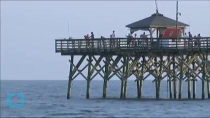 New Shark Attack Reported in North Carolina