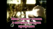Kylie Minogue & Nick Cave - Where The Wild Roses Grow (субтитри)