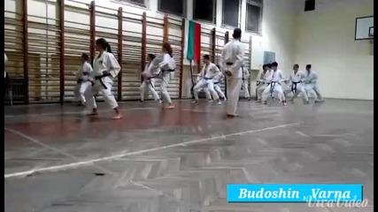 клуб Будошин (карате шотокан) ката видео