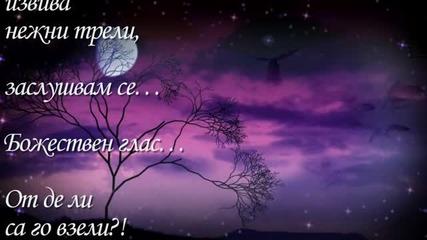 Лятна нощ...