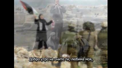Майс Шалаш - Добро утро, Палестина!