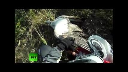 Ето как се ловуват птици !-смях!