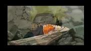 Naruto vs Pain - Let You Down