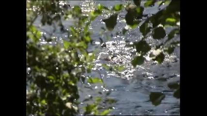 Фолклор - Драгиева чешма (караоке)