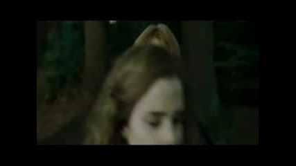 Ron/hermione - Contagious