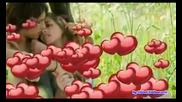 Rifat Tepic - Svud te trazim