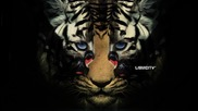 *2012* Insideinfo & Smooth - Hear Me Roar /drum&bass/