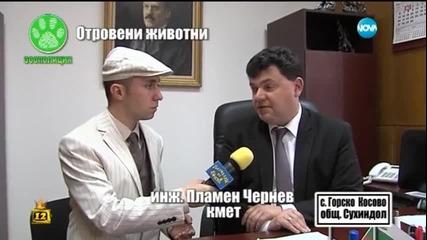 Отровени животни - Господари на ефира (08.04.2015)