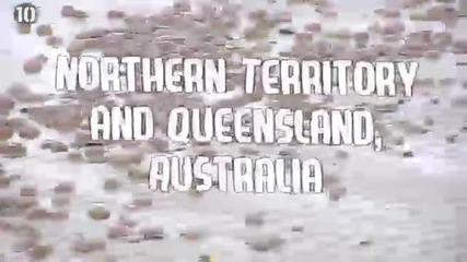 10-те Най-опасни плажа в света - Планета Земя - Видео