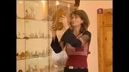 Кехлибар - Вкаменелости