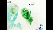 Pesh & An2 - Debelani