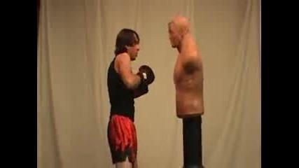 Taekwondo Kickboxing Training Sampler 2010