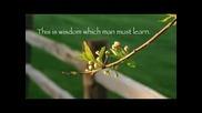 Flower Duet - Leo Delibes - Lakme
