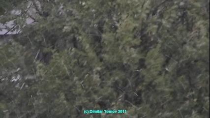 Варна - първи сняг 17-18.10.2011