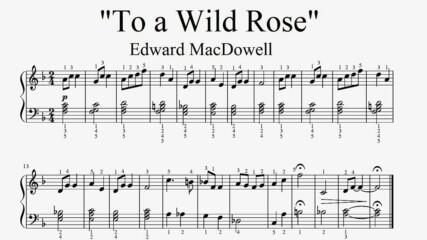 """Edward MacDowell - To a Wild Rose"" - Piano sheet music (by Tatiana Hyusein)"