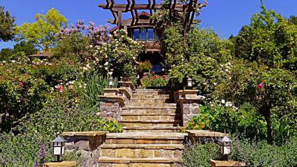 Ernesto Cortazar - Seguire Mi Viaje-sabor A Mi - Rose Gardens