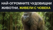 Най-огромните чудовищни животни, живели с човека.