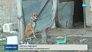 Собственикът на кучето, убило дете - с обвинение