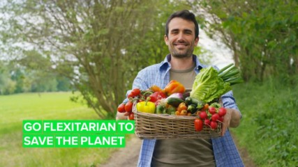 Is being flexitarian the best thing for the environment?