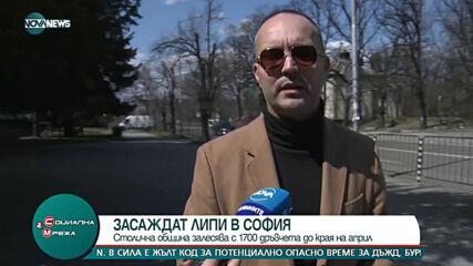 """""""Социална мрежа"""" (14.04.2021)"""