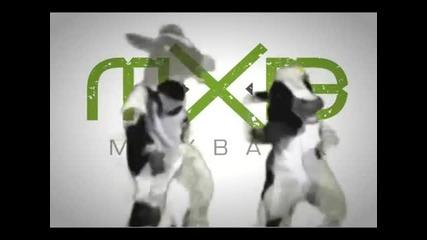 Maximus - танцуващата крава