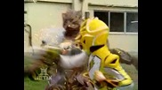 Power Rangers Jungle Fury - 20