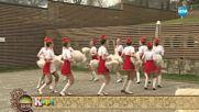 Опит във Велинград за поставяне на рекорд на Гинес за най-много боядисани яйца в света - На кафе
