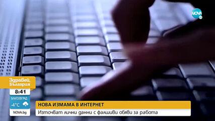 НОВА ИЗМАМА В ИНТЕРНЕТ: Източват лични данни с фалшиви обяви за работа