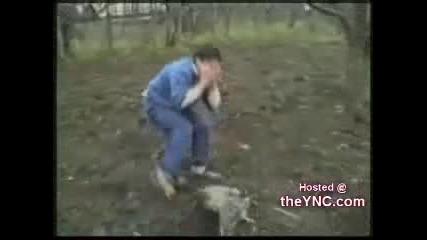 !!! Адски смях - птици нападат хора !!!