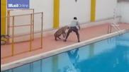 Леопард влезе в училище в Индия и рани 6 души