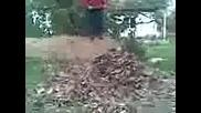 сашо и пепо в шумата