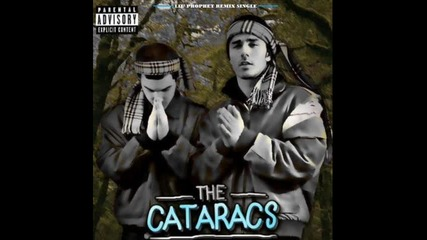 The Cataracs feat Dev-the top of the world!!
