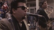 Los Lobos - Set Me Free (Rosa Lee) (Оfficial video)