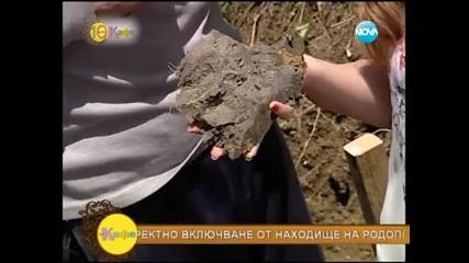 Лечебните свойства на хумата - На кафе (26.05.2014г.)