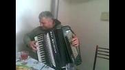 akordeonist ot Alfatar