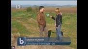 У нас бизнес с бизони, b T V Новините, 22 април 2011