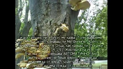 """Автоматично или насила се """"взема"""" Царството? (освещението и спасението) ( Юлия Борисова)"""