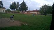 makedoneca i Turley