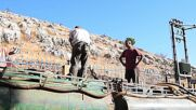 Lebanon: Deepening fuel crisis in south cripples key sectors