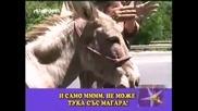 gospodari na efira - ne moje s magara
