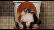 Пръдливата Котка
