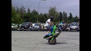 Stunt Show - Зала Фестивална 2