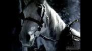 Конят Пуска Газ