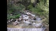 Bulgaria - Pirin Mountain (Oliver Shanti)
