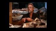Dino Death Trap част 2 + БГ аудио